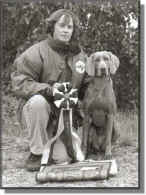 Aust Ch/SV'98/NORDV'99 Britfeld Poetry Inmotion Export to Sweden - LouLou's 2nd BEST IN SHOW October 1996